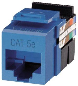 Prise Cat 5e blue